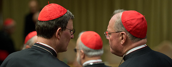 Cardinals Woelki, Dolan talk in synod hall at Vatican during general congregation meeting