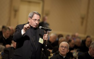 ARCHBISHOP MYERS ADDRESSES U.S. BISHOPS FROM FLOOR AT ANNUAL MEETING