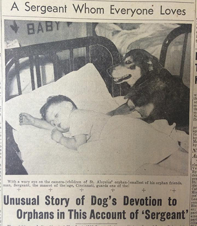 A clipping from the June 22, 1945 edition of The Catholic Telegraph-Register tells the story of a dog named Sergeant. (CT File)