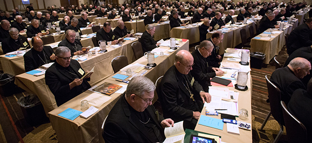 Bishops read material June 11 during the spring general assembly of the U.S. Conference of Catholic Bishops in St. Louis. (CNS photo/Lisa Johnston, St. Louis Review)