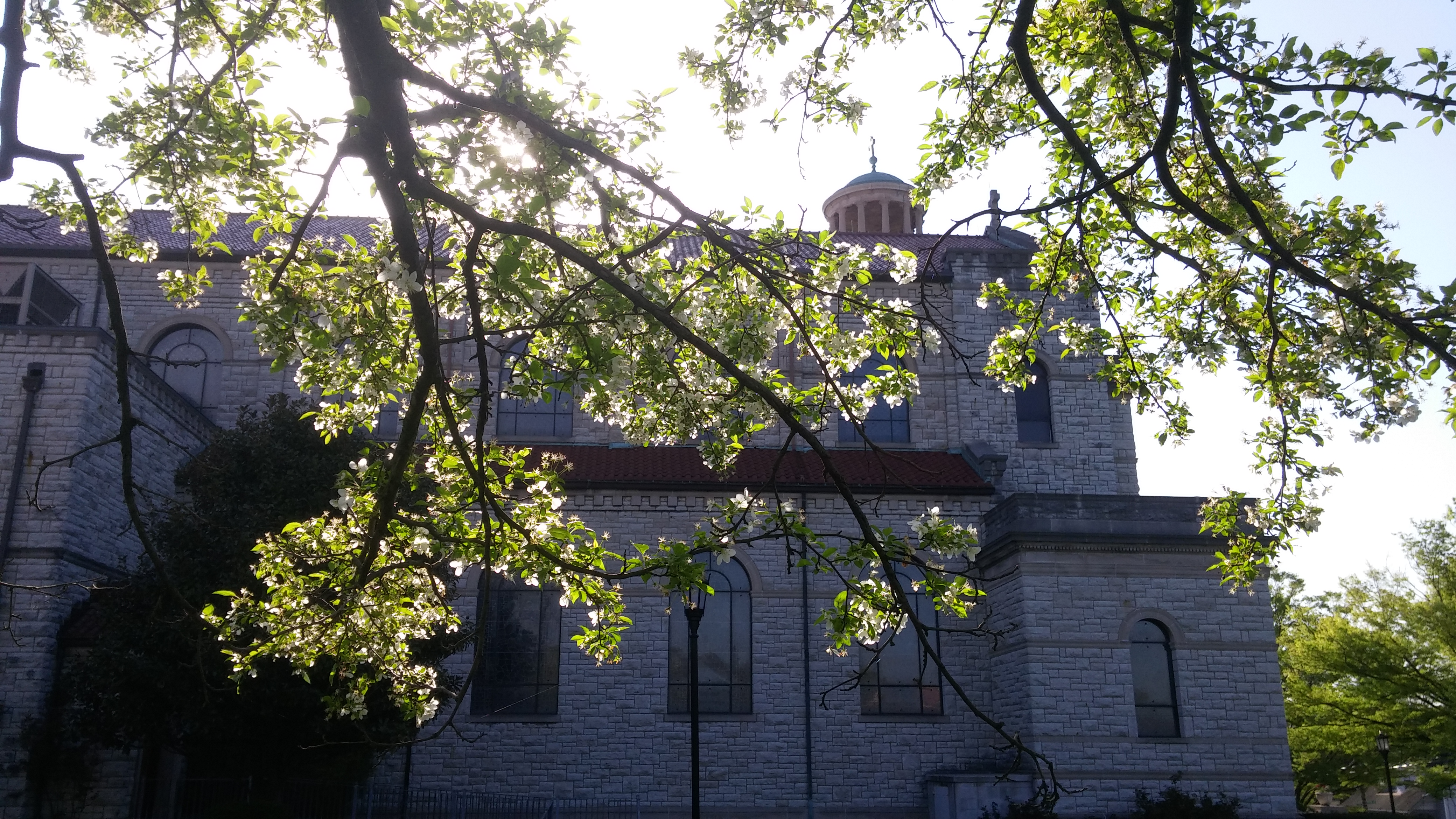 St. Boniface Church in Cincinnati looking east on Holy Thursday. (Greg Hartman/CT Photo)