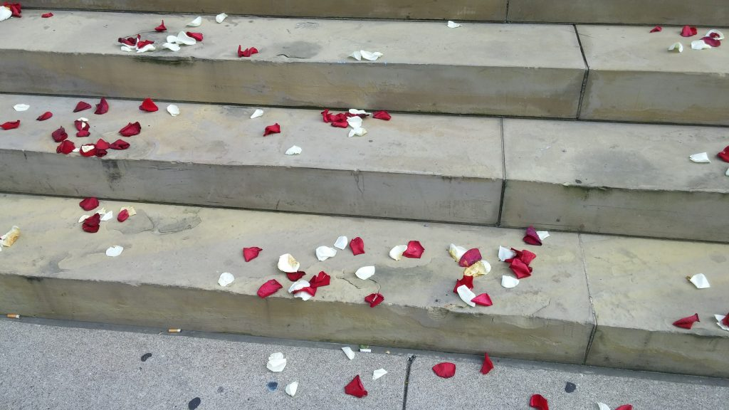 Rose pedals adorned the steps of Old St. Mary's on July 3, 2017 on their 175th anniversary (CT Photo/Greg Hartman)