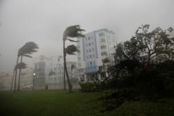 Heavy wind caused by Hurricane Irma is seen in Miami Sept. 10. (CNS