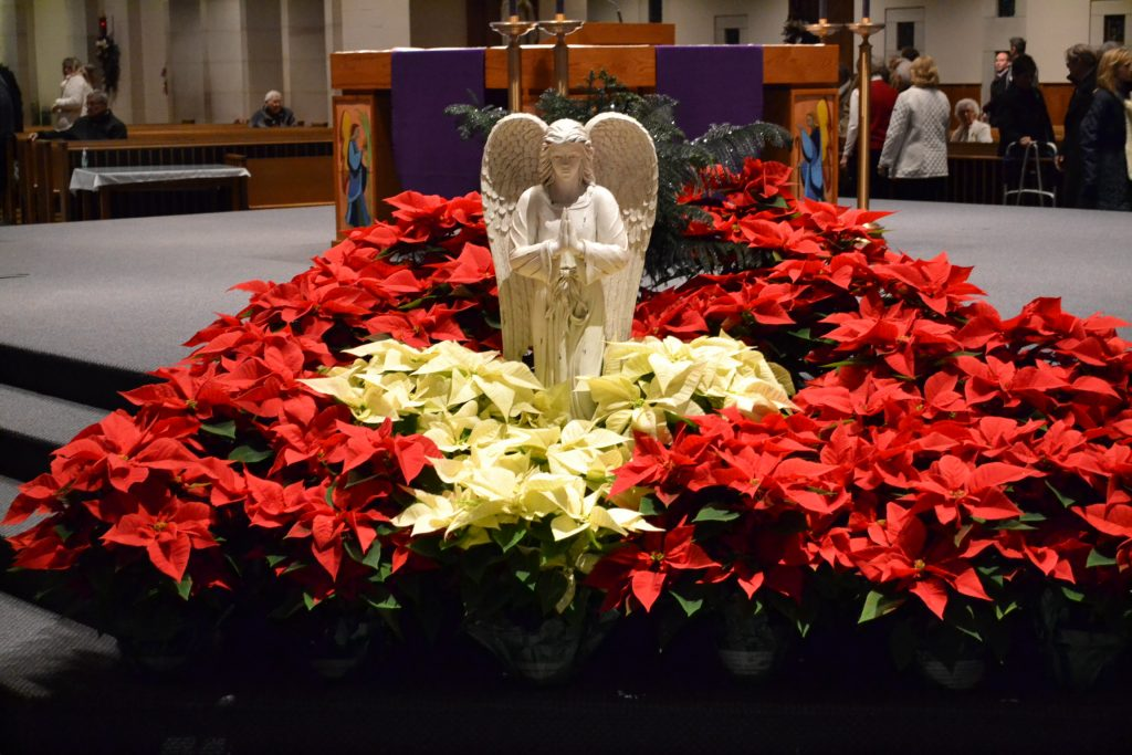 The Guardian Angel surrounded by seasonal Poinsettias awaiting the Christmas Season (CT Photo/Greg Hartman)