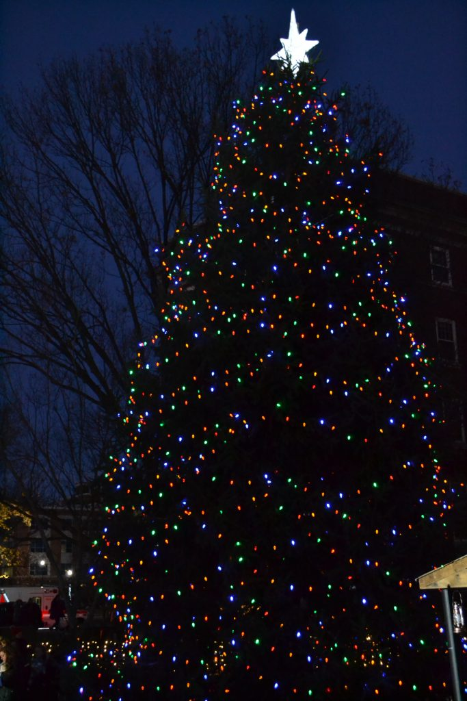 Oh Christmas Tree, Oh Christmas Tree, How faithful are thy branches. (CT Photo/Greg Hartman)