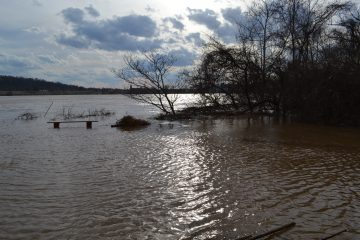 Floodwaters encroach St. Rose's parking lot. (CT Photo/Greg Hartman)